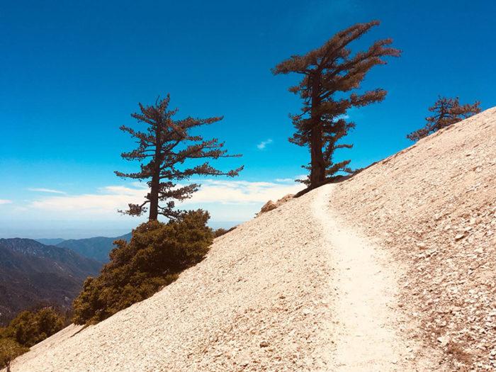 11 au 17 juin km447 **Big Bear Lake – Casa Del Luna – Greenvalley**
