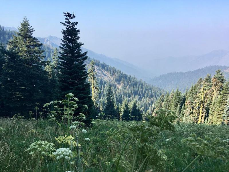 6 août **Mont Shasta – Seiad Valley**